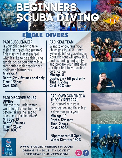 PADI Courses in the Red Sea