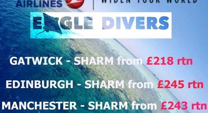 Cheap flights to Sharm el Sheikh!